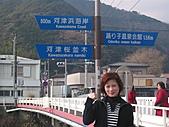 2004日本伊豆半島 東京廸斯耐:day3河津櫻花祭_1721