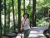 20060812桃園復興_東眼山:162_6205.JPG