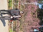 2004日本伊豆半島 東京廸斯耐:day2 小田原城_1643.