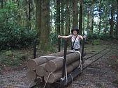 20060812桃園復興_東眼山:162_6211.JPG
