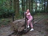 20060812桃園復興_東眼山:162_6212.JPG