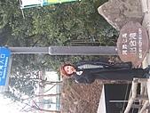 2004日本伊豆半島 東京廸斯耐:day3河津瀑布_1744.