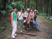 20060812桃園復興_東眼山:162_6218.JPG