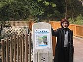 2004日本伊豆半島 東京廸斯耐:day3河津瀑布_1743.