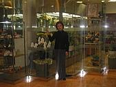2004日本伊豆半島 東京廸斯耐:day3-4 千葉 Green Tower_1878.JP
