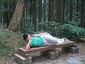 20060812桃園復興_東眼山:162_6231.JPG