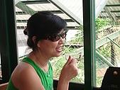 20060812桃園復興_東眼山:IMGP1244.JPG