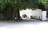 2010中山大學k7:K7(PART1)015雜記.jpg