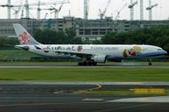 鐵道伯的國內外交通運輸相關相簿:華航A330-300發動機異常 起飛後4小時轉.jpg
