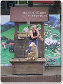 2013.04  清境‧青青草原+觀山牧區:1759510766.jpg