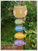 2016.10 苗栗南庄‧橄欖樹‧咖啡民宿:苗栗南庄‧橄欖樹‧咖啡民宿