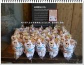 2015.04 台南‧虱目魚主題館:台南‧虱目魚主題館