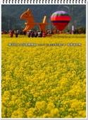 2015.02 三星花海氣球嘉年華‧搖搖洛克馬:三星花海氣球嘉年華‧搖搖洛克馬