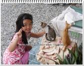 2015.08 花蓮吉安‧干城小鎮民宿(環境篇):花蓮吉安‧干城小鎮民宿(環境篇)