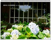 2015.05 新竹尖石‧6號花園:新竹尖石‧6號花園