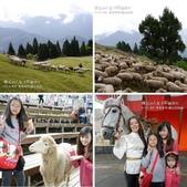 2013.04  清境‧青青草原+觀山牧區:相簿封面