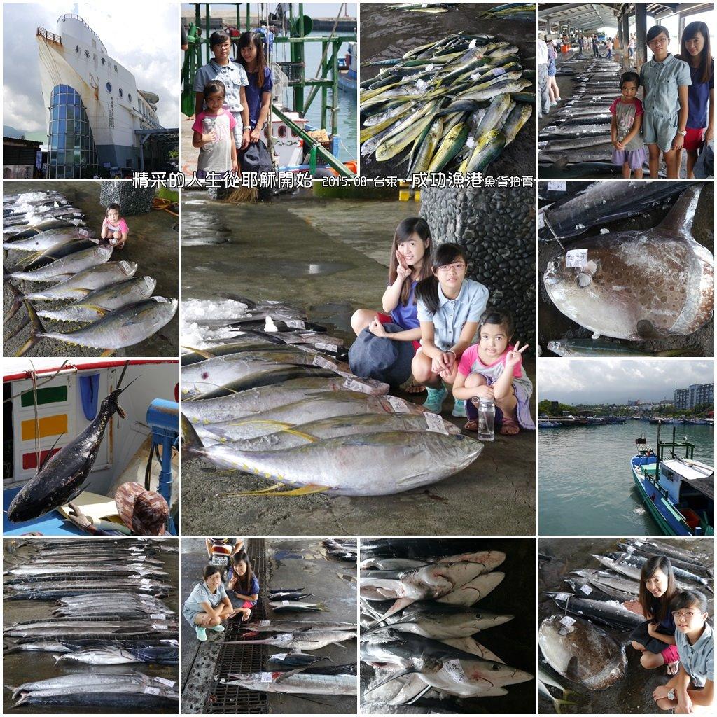 2015.08 台東‧成功(新港)漁港:台東‧成功(新港)漁港