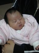2008.11媽媽小組來去佩君家:1190925232.jpg