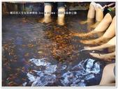 2016.08 宜蘭礁溪‧湯圍溝溫泉公園:P1430455.JPG