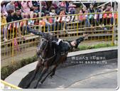 2013.04  清境‧青青草原+觀山牧區:1759510781.jpg