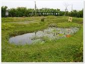 2017.04 台南後壁‧優雅農夫藝文農場:P1520512.JPG