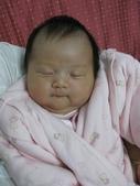 2008.11媽媽小組來去佩君家:1190925234.jpg