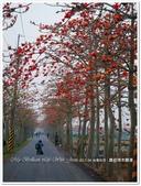 2017.04 台南白河‧林初埤木棉道:台南白河‧林初埤木棉道