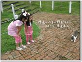 2010.10  悠遊北橫‧綠光森林:1106525355.jpg
