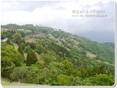 2013.04  清境‧青青草原+觀山牧區:1759510772.jpg