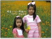 2010.10  悠遊北橫‧綠光森林:1106525322.jpg