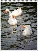 2015.02 宜蘭‧龍潭湖風景區:宜蘭‧龍潭湖風景區