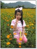 2010.10  悠遊北橫‧綠光森林:1106525323.jpg