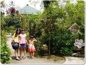 2014.08 新竹尖石‧紅薔薇:新竹尖石‧紅薔薇