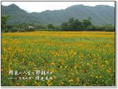 2010.10  悠遊北橫‧綠光森林:1106525324.jpg