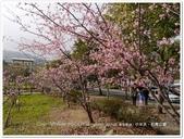 2017.02 南投鹿谷‧小半天‧石馬公園:南投鹿谷‧小半天‧石馬公園