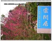 2015.02 台中新社‧雲閒居:台中新社‧雲閒居