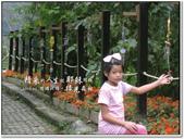 2010.10  悠遊北橫‧綠光森林:1106525343.jpg