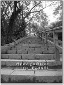 2011.05  金瓜石.黃金博物園區:1509091597.jpg