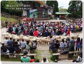 2013.04  清境‧青青草原+觀山牧區:1759510764.jpg