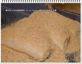 2015.04 大溪‧蔡記手工麥芽花生糖:大溪‧蔡記手工麥芽花生糖