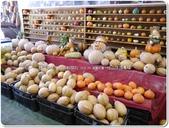 2014.09 宜蘭‧旺山休閒農場:宜蘭‧南瓜王國~旺山休閒農場