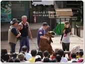 2013.04  清境‧青青草原+觀山牧區:1759510765.jpg