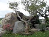 景觀照:1932241415.jpg