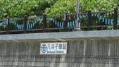 參訪八斗子風景區:DSC00616.JPG