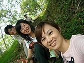 0504五月天桐花祭:等待中