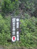 1106銀杏&茶園:找路中