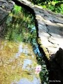 1208池上飯包文化故事館:水往上流