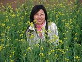 0612新社花海:油菜花