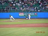 0806職棒冠軍賽:張泰山打擊