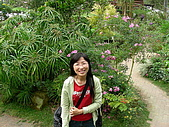 0511薰衣草森林:花園